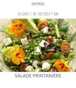 achat vente salade printanière traiteur plat à emporter avignon barbentane saint rémy provence